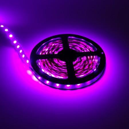ไฟเส้นริบบิ้น แสงสีชมพู 12V IP33 SMD5050 แบบเปลือย