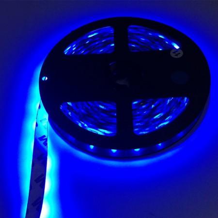 ไฟเส้นริบบิ้น แสงสีน้ำเงิน 12V IP33 SMD5050 แบบเปลือย