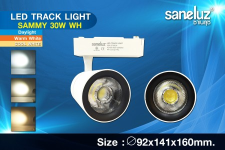 Saneluz LED 30W Track Light SAMMY White