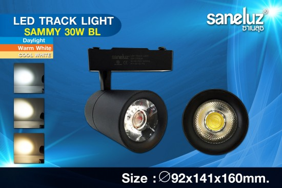 Saneluz LED 30W Track Light SAMMY Black